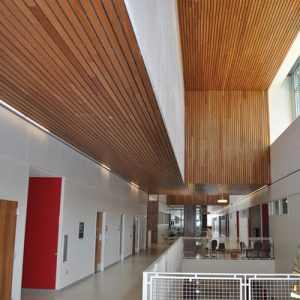 linear wood panels
